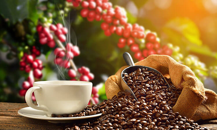 Are Espresso Beans The Same With Coffee Beans