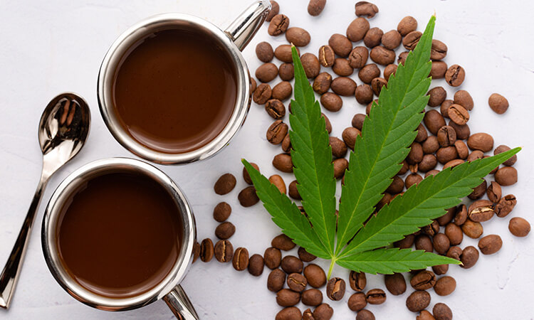 What Is CBD-Infused Coffee - The Many Benefits of CBD Oil in Coffee